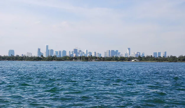miami fly fishing carl ball skyline